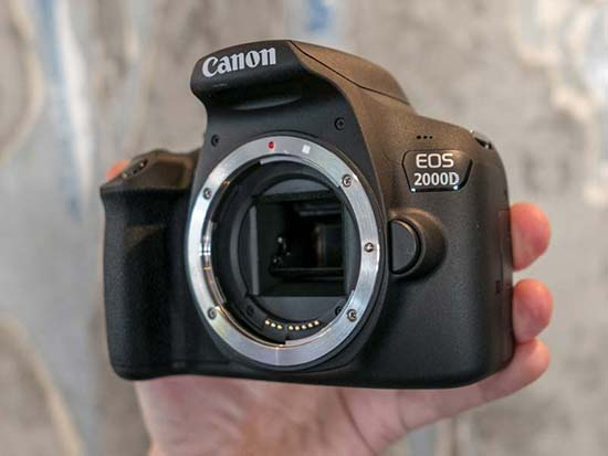 Canon EOS 2000D and 4000D