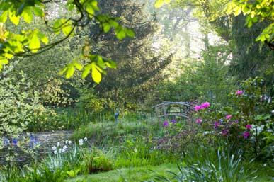 How to Photograph Gardens