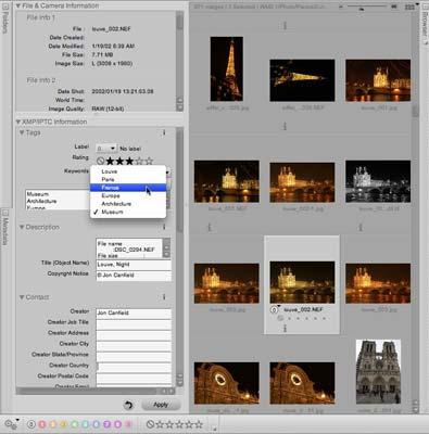 Nikon Capture NX 2 - Main Interface