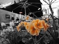 effects_07.jpg