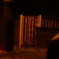 night_auto_iso1251.jpg