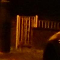 night_scene1.jpg