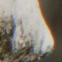 chromatic3.jpg