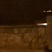 night_program_crop.jpg