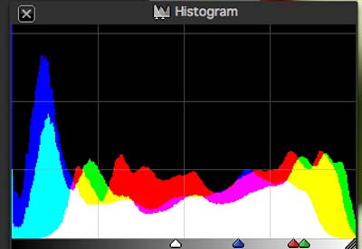 Silkypix Developer Studio - Histogram