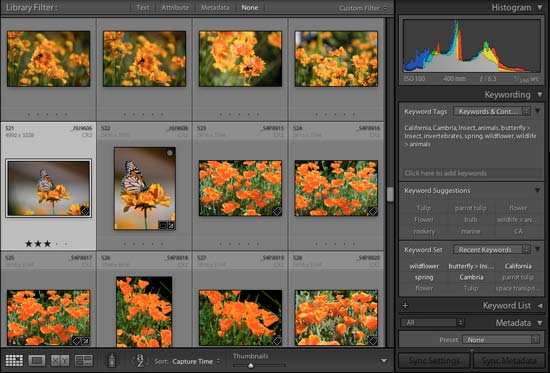 21 Reasons to Use Lightroom