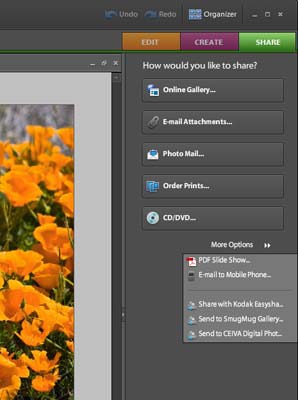 Adobe Photoshop Elements 6 - Figure 1