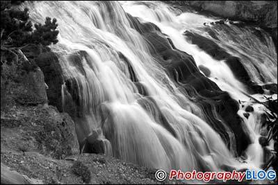 Epson Stylus Photo R1900
