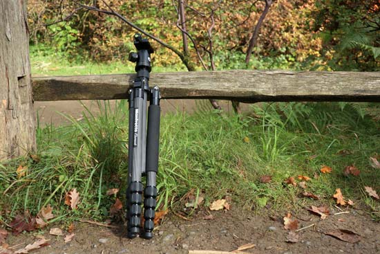 Manfrotto Element Big tripod