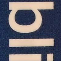 f11.jpg