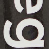 f2_8.jpg