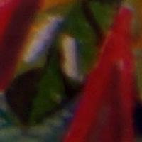 Sony_SAL2470Z2-sharpness-24mm-f2_8-edge_crop.jpg