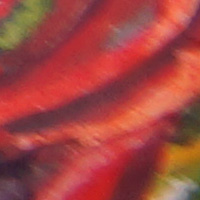 Sony_SAL2470Z2-sharpness-35mm-f4-edge_crop.jpg
