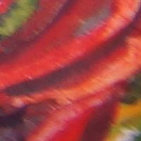 Sony_SAL2470Z2-sharpness-35mm-f5_6-edge_crop.jpg